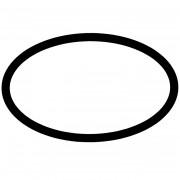 Pentair WhisperFlo Pump Lid O-Ring 350013